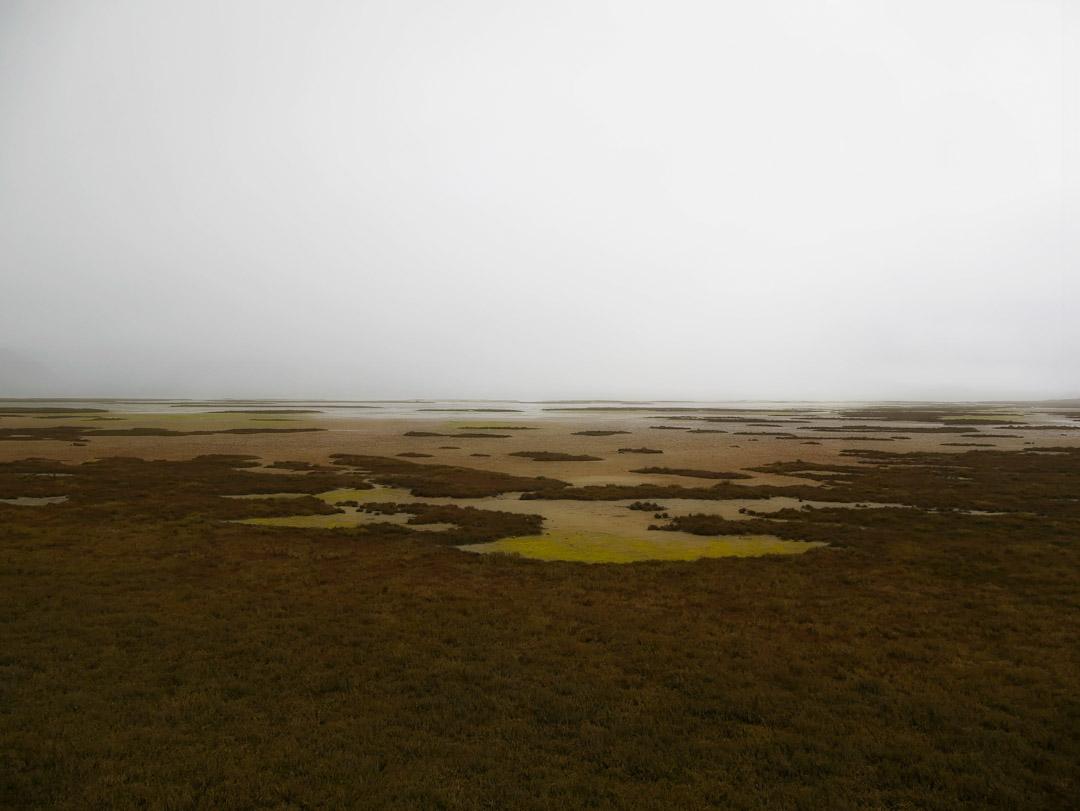 Aramoana Spit, Otago NZ. Salt Flats